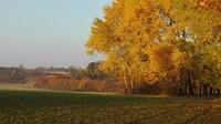 podzim na Chotěnově